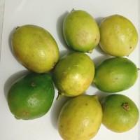Buah Jeruk Lemon Lime Lokal 1kg