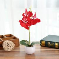 Aonez Bunga hias anggrek phalaenopsis bunga dekorasi dengan pot