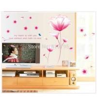 JEJO AY9184 aster pink wall sticker/ wallsticker 60x90