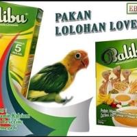 EBOD balibu bubur loloh untuk piyik lovebird