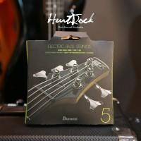 Senar Bass Ibanez IEBS5C 5 Strings