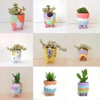 Paket bundle Pot & Kaktus Mini Leggie Series FUN