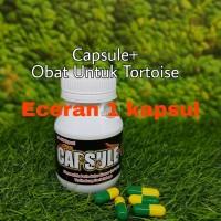 Capsule plus Obat Reptil / Torto Kura Kura Flu / Pilek ECERAN