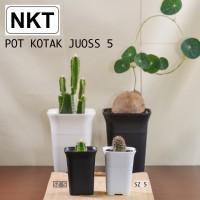 Pot bunga | Pot kotak 5cm | pot 5cm | pot kaktus | pot mini