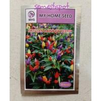 Benih Bibit Cabe Bolivian Rainbow Pepper My Home Seed MHS