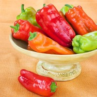 10 Biji Benih Cabe Cubanelle Pepper Seed Cabe Manis