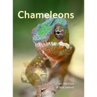 Buku Reptile Import Chameleons book by Chris Mattison & Nick Garbutt
