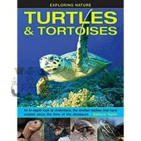 Buku Reptile Import Kura Kura Turtles and Tortoises by Barbara Taylor
