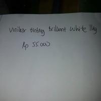 Vinilex tinting 1kg brilliant white