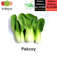 Sayur Pakcoy/Pakchoy/Pokcoy/Coysam/Sawi Sendok segar (250 gr)