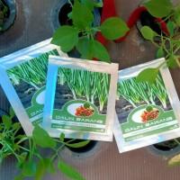 Benih Bibit Daun Bawang Sayuran Hidroponik Sehat dan Lezat