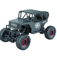 RC 4WD off road
