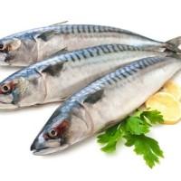 ikan tenggiri per 500gram