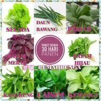 benih sayur 30 hari panen/benih sayuran/bibit sayuran