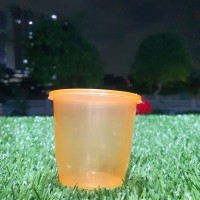 Cup Puding Merpati 150 Ml Cup Jelly Ice Cream Slime Rujak 150ml