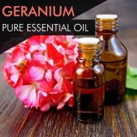 Geranium Oil / Minyak Geranium - 100% PURE Essential Oil - 5mL