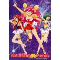 DVD FIlm Anime Wedding Peach Sub English