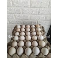 Telur Ayam Kampung Merah Segar Isi 30 Butir