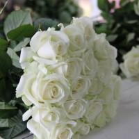 Fresh WHITE Roses / Bunga Mawar PUTIH - Free wrapping