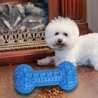 Mainan Gigit Anjing Model Kunyah Anti Gigit