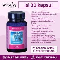 Wellness Joint Formula 30 Kapsul Suplemen Tulang Sendi