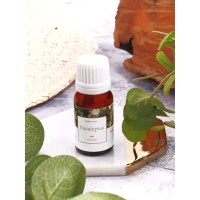 Eucalyptus Oil 10 ml antibakteri, infeksi jamur