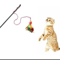 mainan pancingan bulu untuk kucing