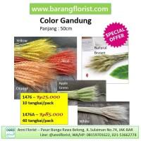 Color Gandung (1476A) 40 tangkai/pack, aksesoris toko bunga