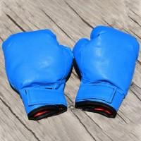 Sarung Tangan Anak untuk Karate / Boxing / Boxing