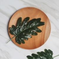 Daun Philodendron / Daun Palsu Pillow Monstera / Properti Foto