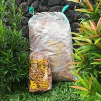 Coco Stick Alas Reptile 36L / Substrat Alami