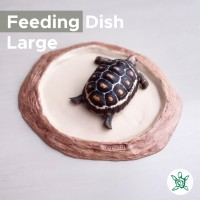 Feeding Dish Round LARGE / Tempat Makan Torto / FDRT04 LARGE