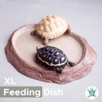 Feeding Dish Round XL / Tempat Makan Reptil / FDRT04 XL