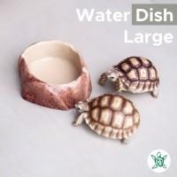 Water Dish Rock LARGE / Tempat Makan / Minum Kura / WDR03 LARGE