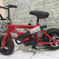 BMX cub mini