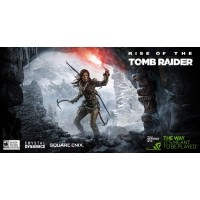 Rise of the Tomb Raider: 20 Year Celebration/ ROTR [STEAM PC]