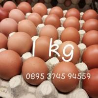 Telur Ayam Negeri 2 kg PREMIUM   Telor Ayam 1 krat