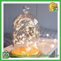 Lampu Hias Dekorasi Star Christmas Fairy 20 LED 2 Meter Warm White -