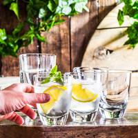 Gelas Resto Cafe Alpi Dof 355 Italy Whisky Mineral Water