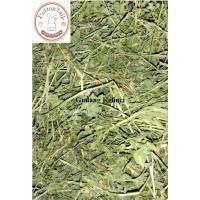 Alfalfa Hay, rumput alfalfa, makanan kelinci, dari rabbit hole