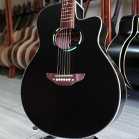 Gitar Akustik APX500 Neck Utuh Grover