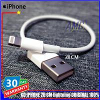 Kabel Data Power Bank iPhone 5 5S 5C 6 6Plus 6S 6S Plus 20cm ORIGINAL