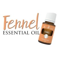 Young Living Oil Fennel