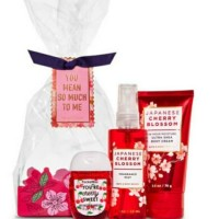 BBW Bath and Body Works Gift Bag Set