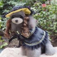 MQ-PF08 Aisha princess suit (hat+wig+cape)