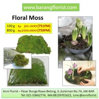 Floral Moss 800g (750FM), rumput kering, aksesoris toko bunga