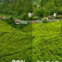 kaca Film Ryben Anti Gores (AG) 20%&Clear