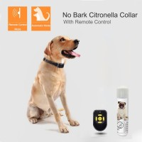 Dog Spray Training Collar with Remote Control Rechargeable Dog