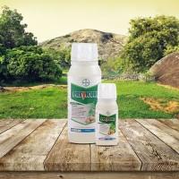 Obat Pertanian Fungisida PREVICUR n Pengendali Hama Tanaman 100ml