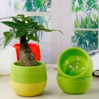 Pot bunga mini bahan plastik pot mini pot kecil